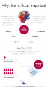 Cord blood uses